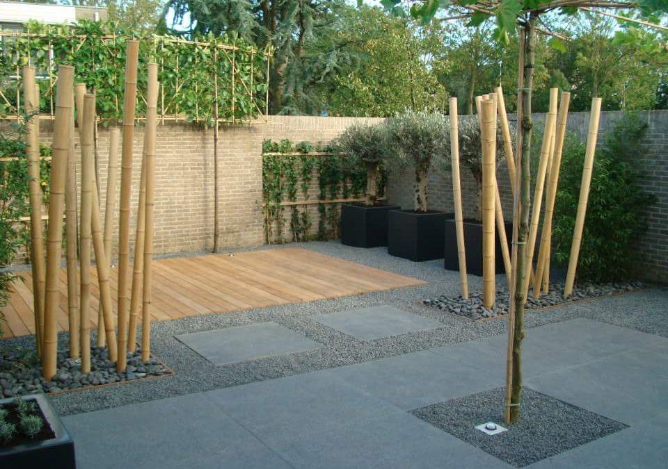 De 5 concepttuinen zijn klaar!